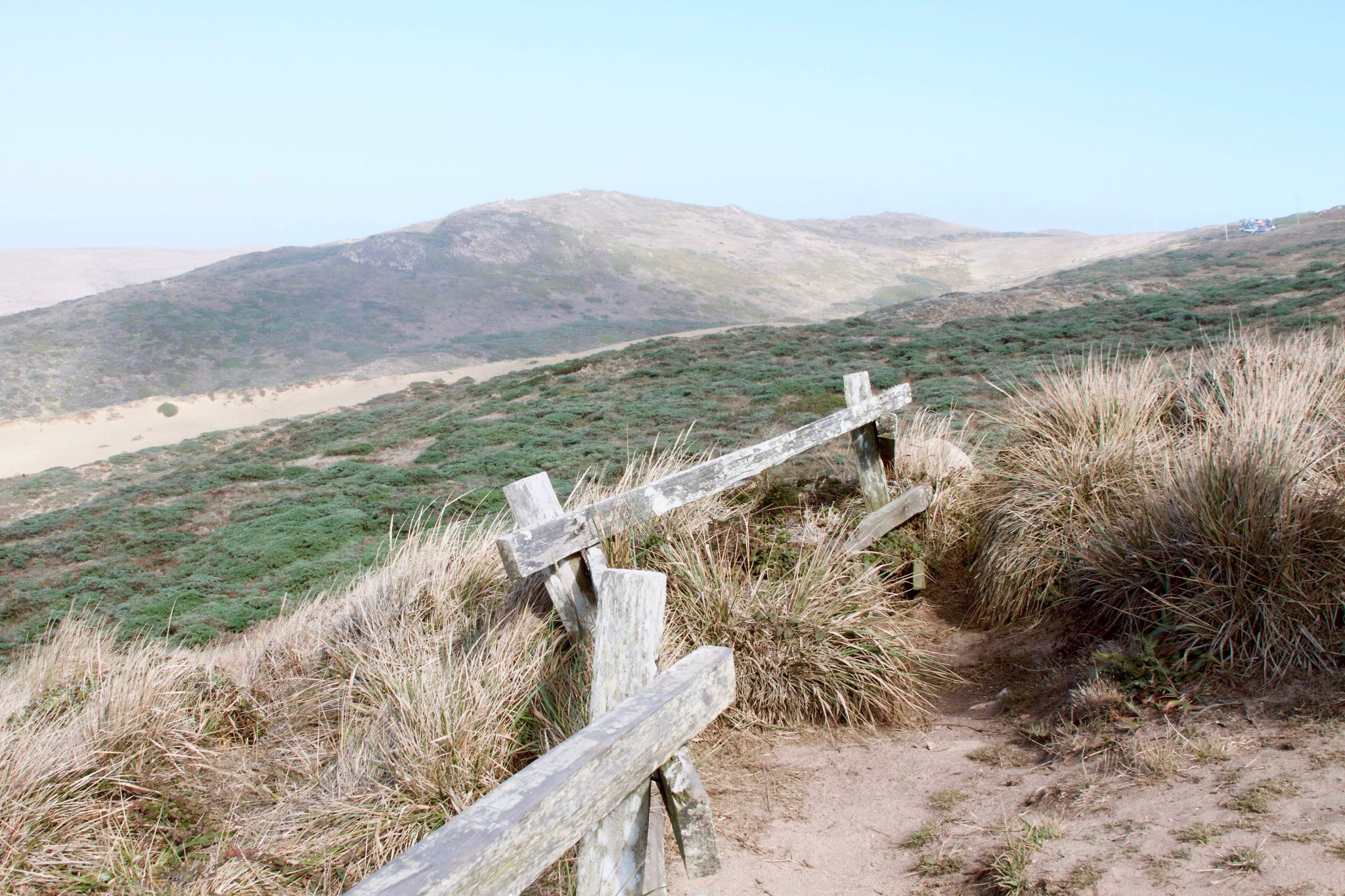 September 2016 - Point Reyes National Seashore. Photo by Jamie Balaoro