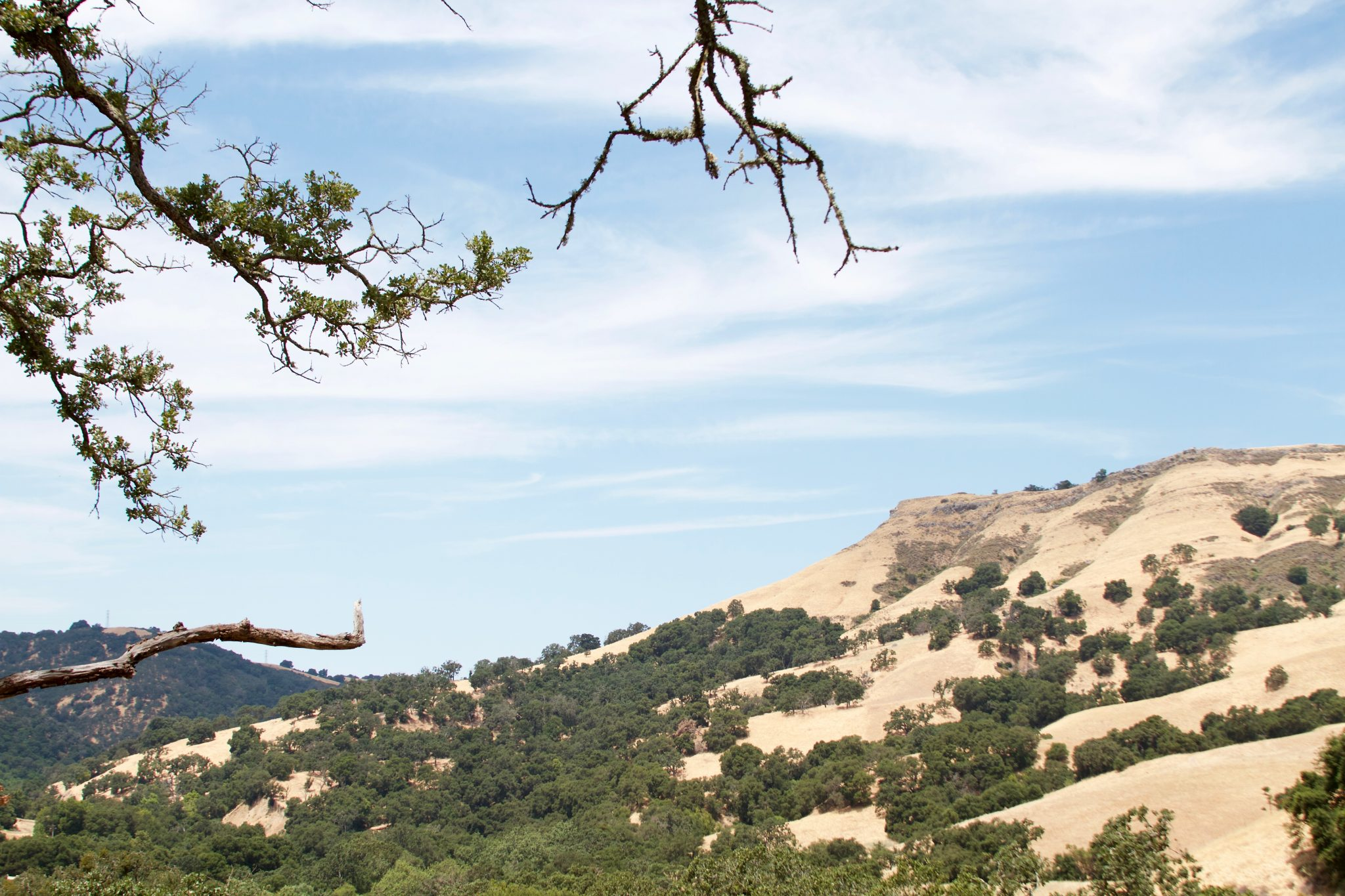 Summertime Hike to Little Yosemite in Sunol Regional Wilderness. Photo by Jamie Balaoro | The Golden Bullet Magazine | thegoldenbullet.org